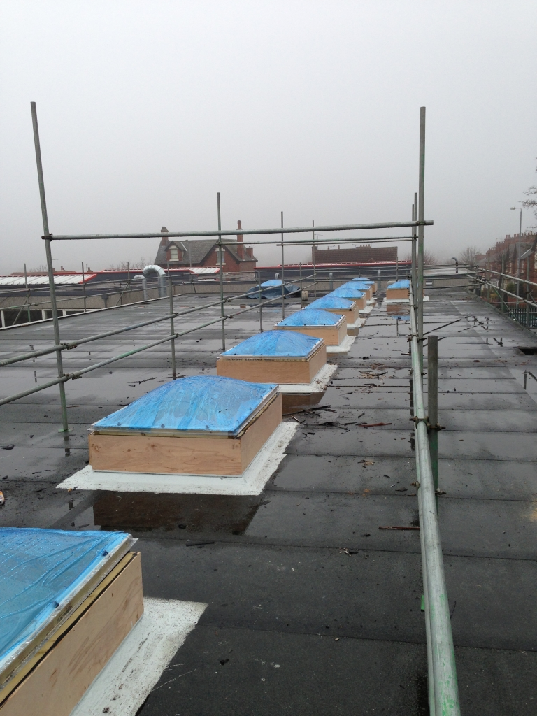 Failed Waterproofing System on a Roof